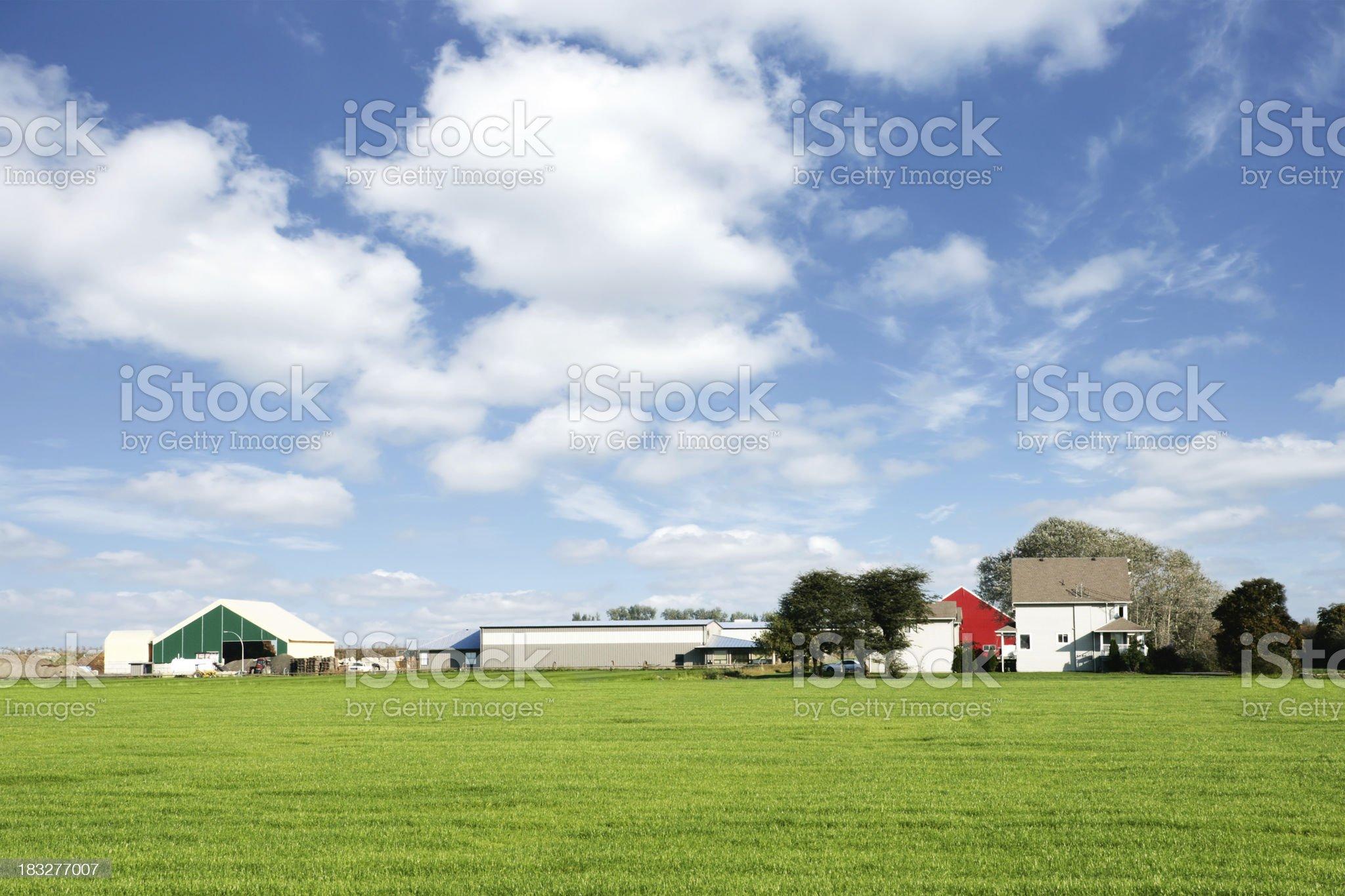 XXL summer farm royalty-free stock photo