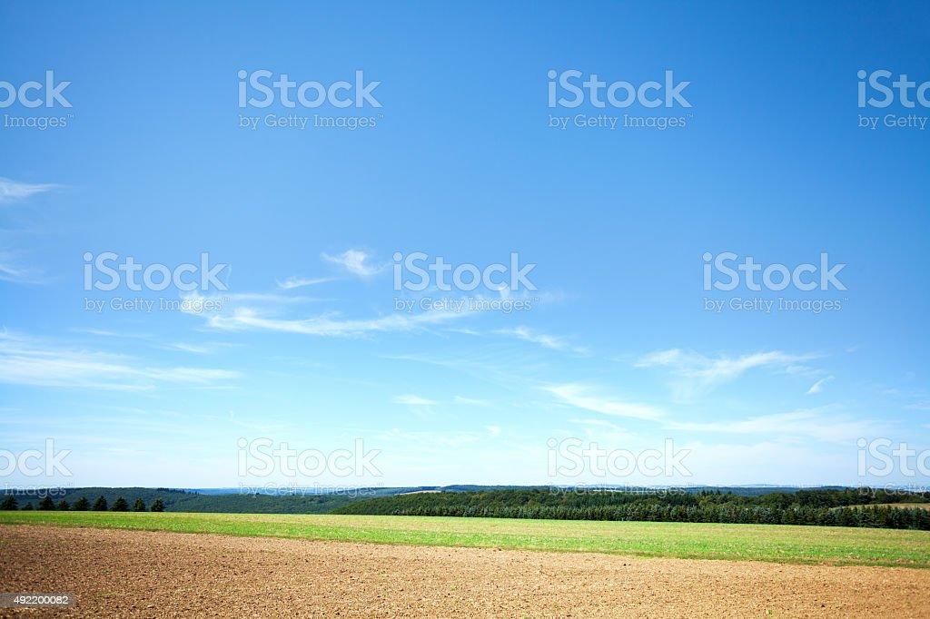 Summer field and woods panorama of Hunsrück stock photo