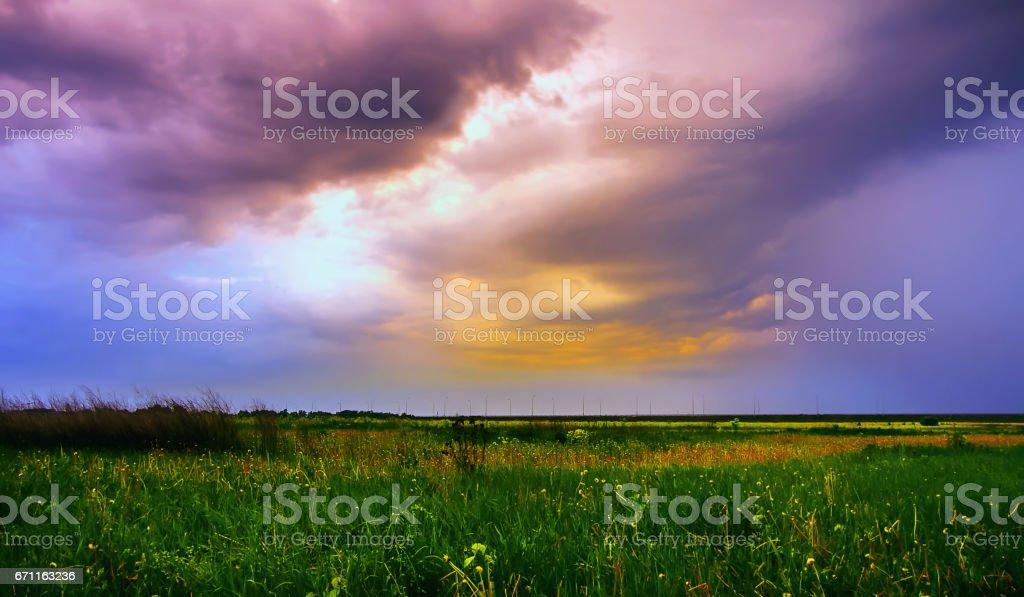 Summer Field Under Dramatic Sky stock photo