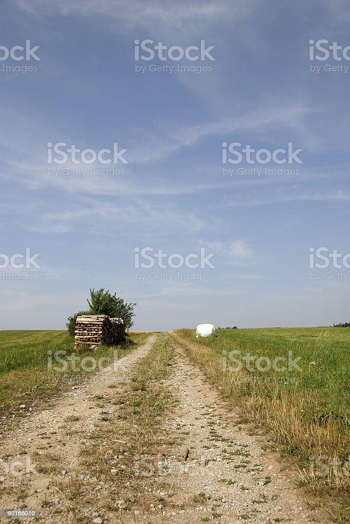 Summer field way, upwards stock photo