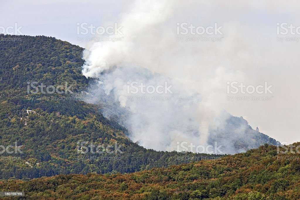 Summer Fire in Forest Slovenia Europe royalty-free stock photo
