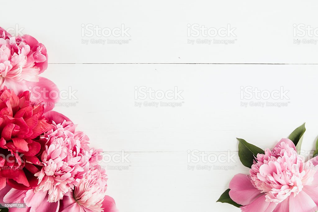 Summer floral frame with pink peonies stock photo