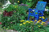 Summer flowers and a blue rocking chair