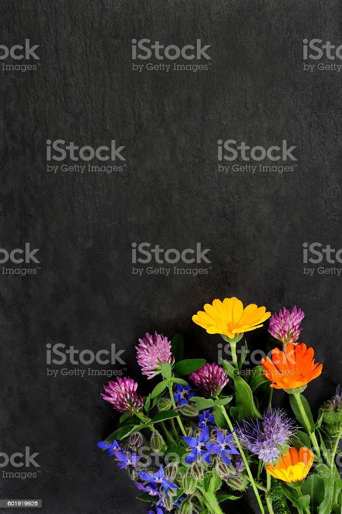 summer flowers over dark board stock photo
