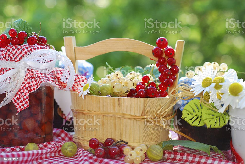 summer fruits and preserves in the garden royalty-free stock photo