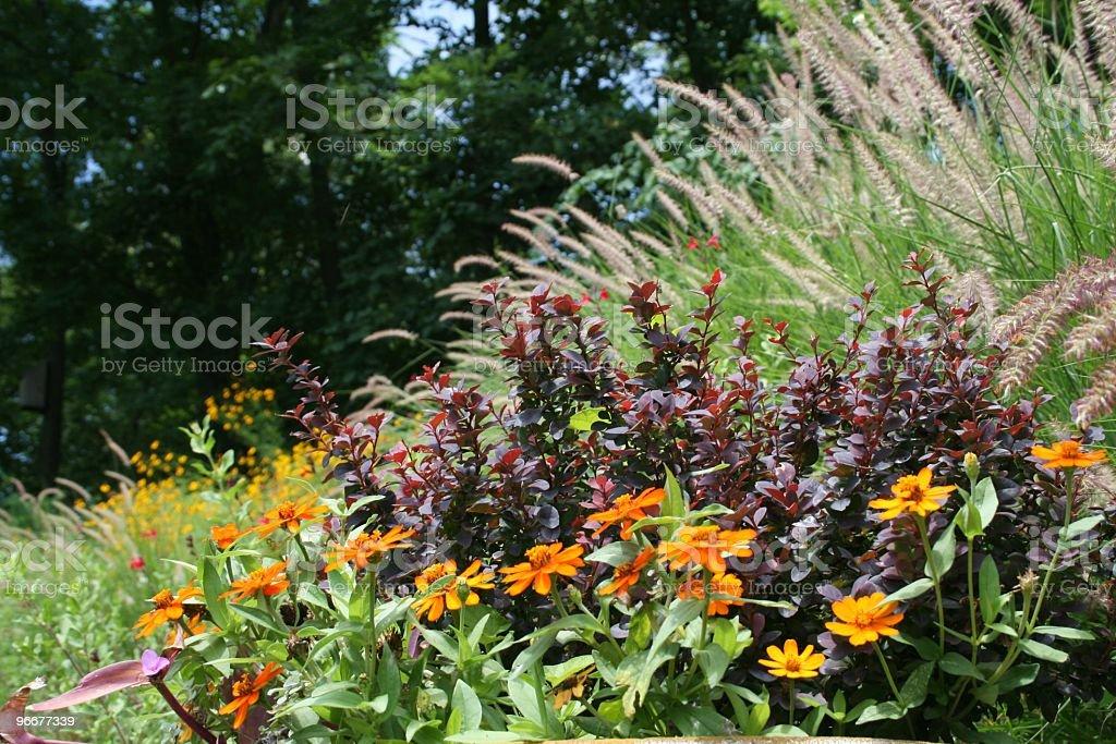 Summer Garden Hillside royalty-free stock photo