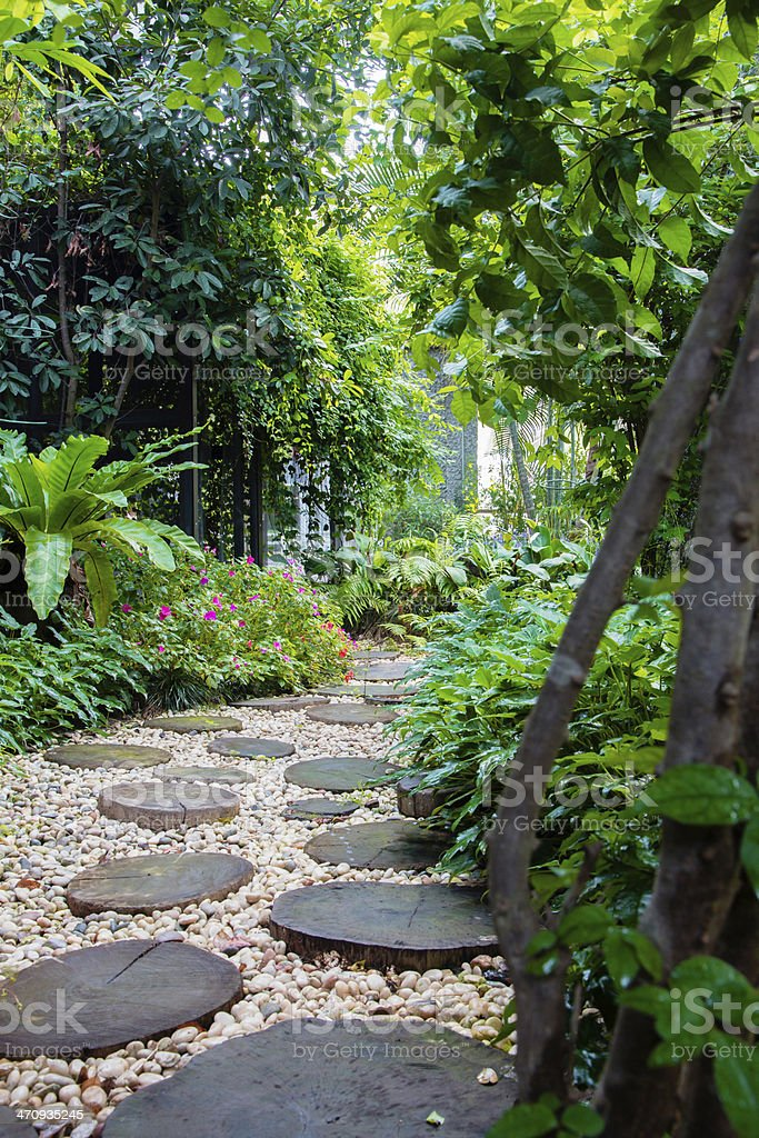 summer garden in  the Asian stock photo