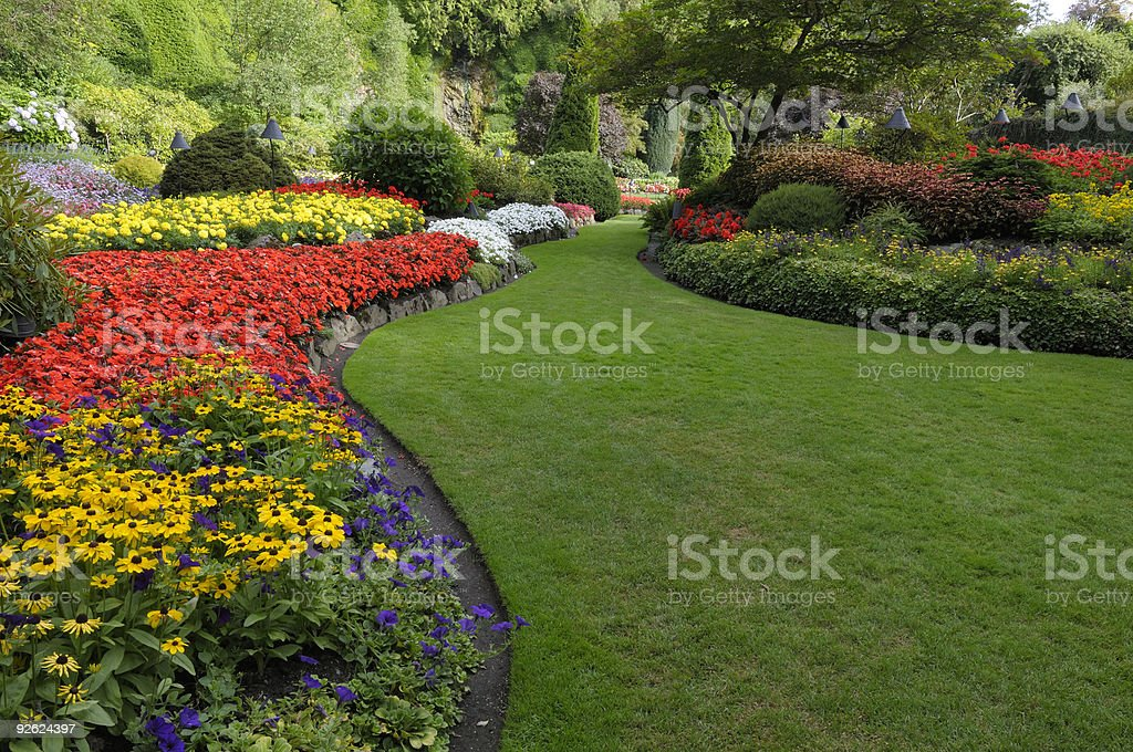 Summer garden stock photo