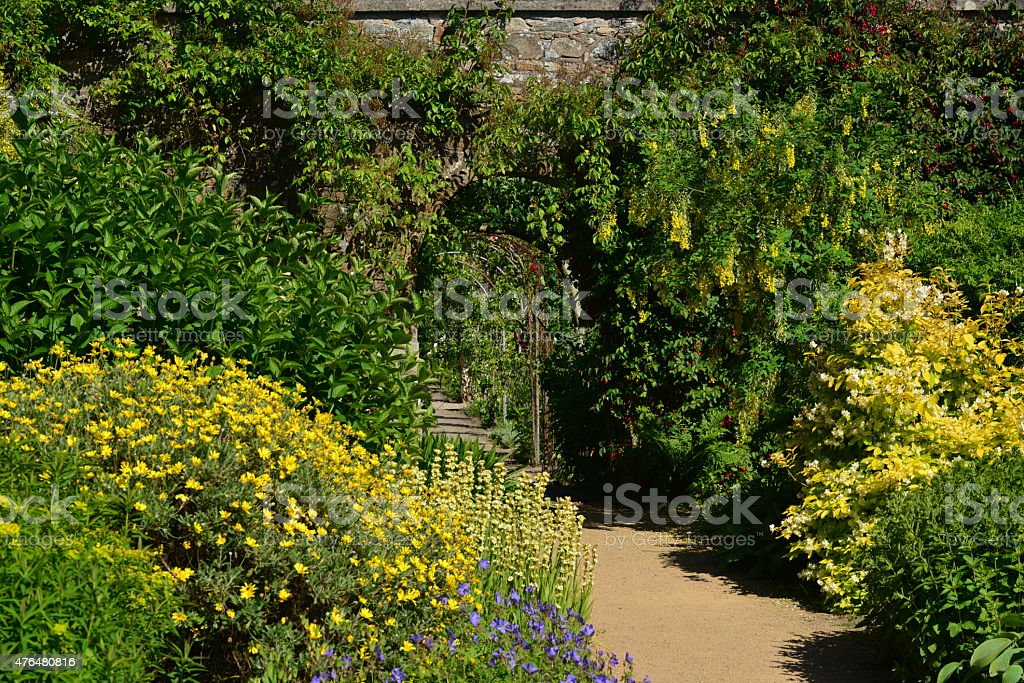Summer garden, U.K. stock photo