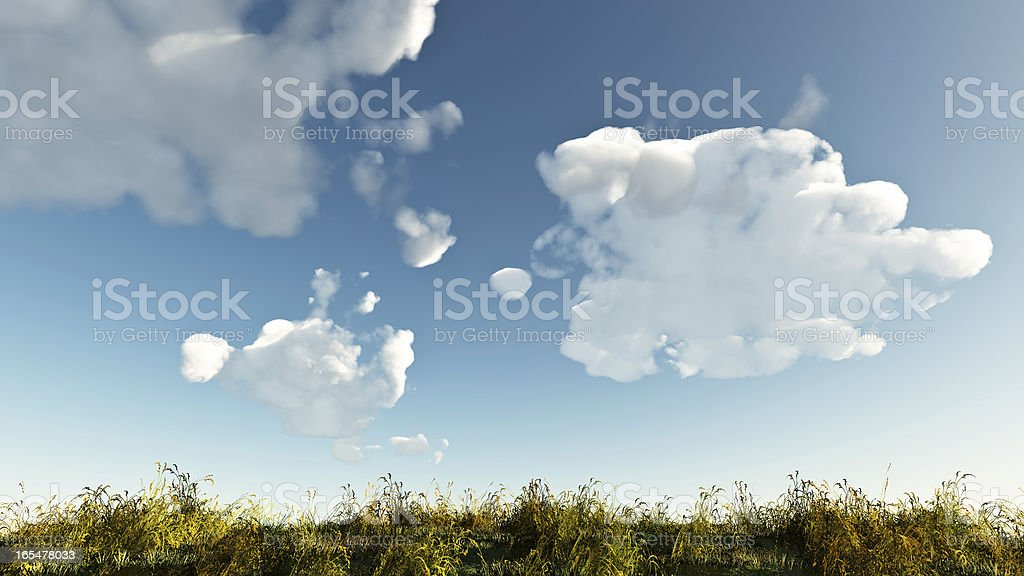 summer grass and bright blue sky royalty-free stock photo