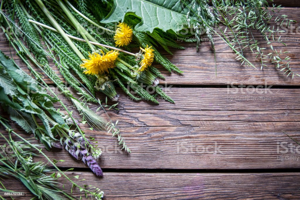 summer grasses on the boards stock photo