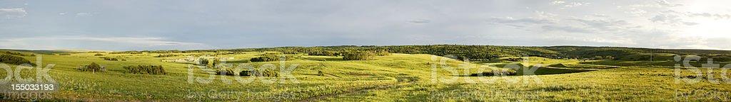 Summer Green Panorama royalty-free stock photo
