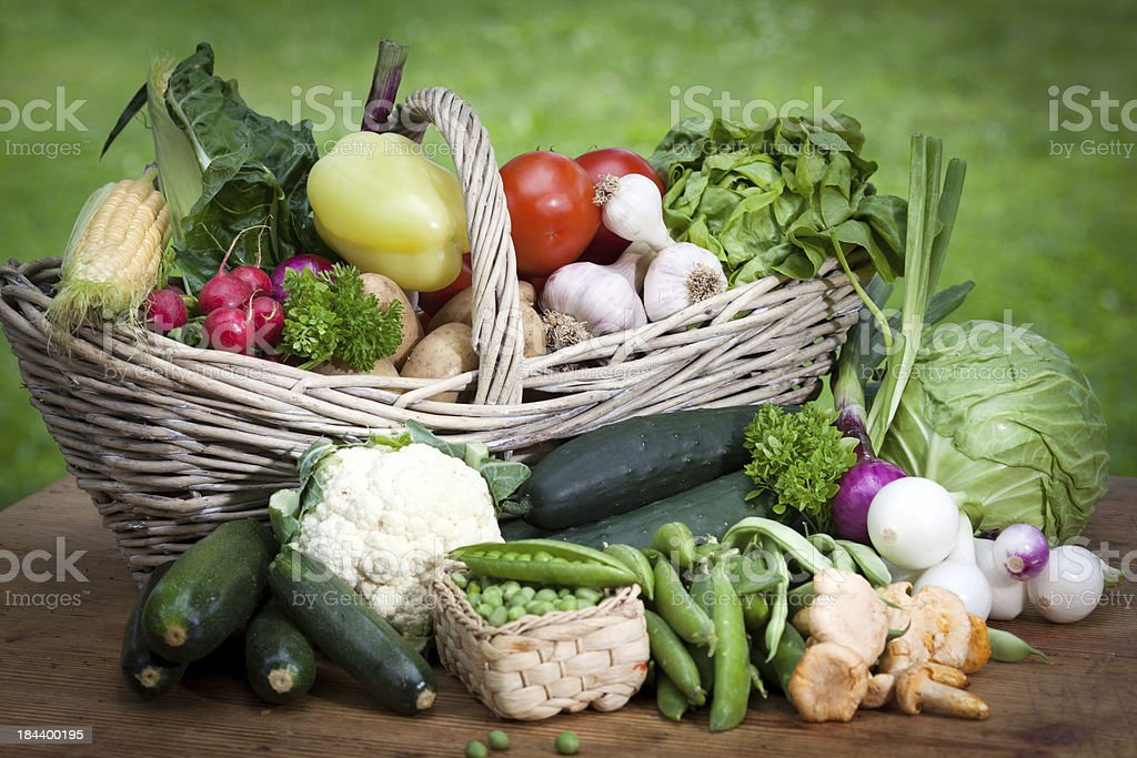 Summer Harvest of Fresh Vegetables royalty-free stock photo