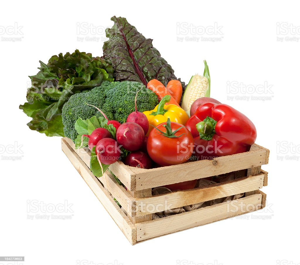 Summer Harvest Vegetables royalty-free stock photo
