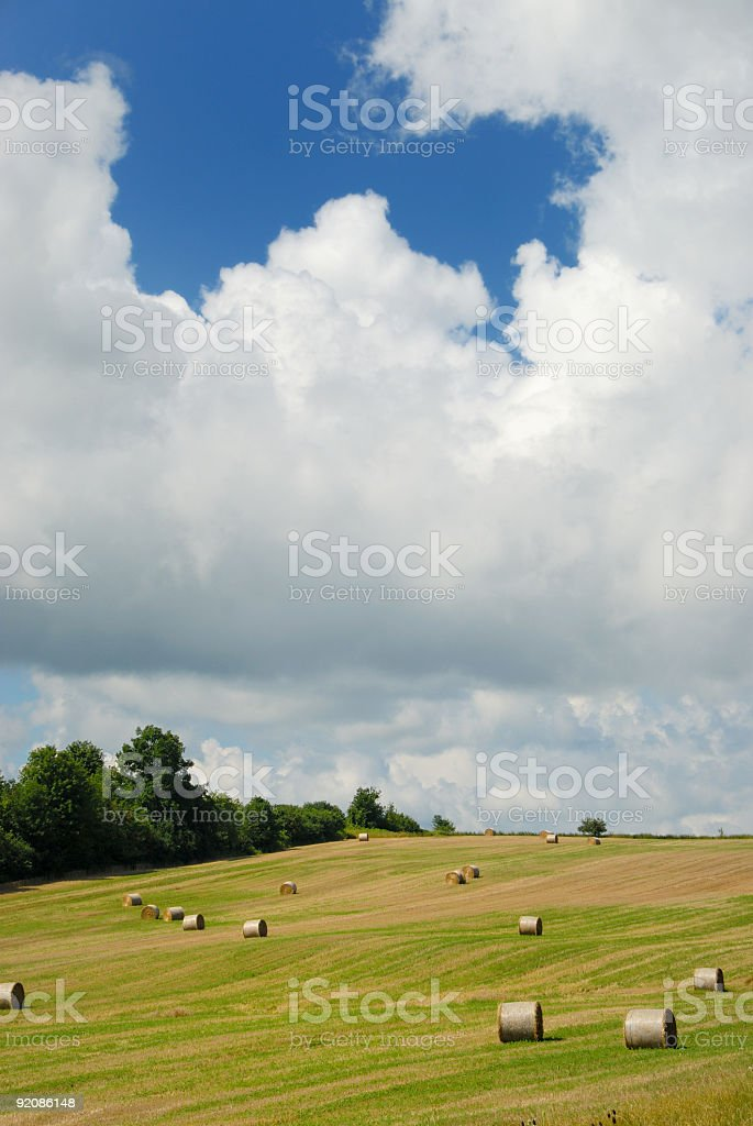 Summer Hayfield royalty-free stock photo