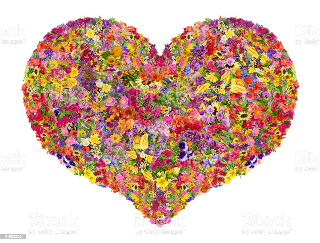 Summer heart concept is made from bright  summer flowers. Abstract handmade isolated  collage stock photo