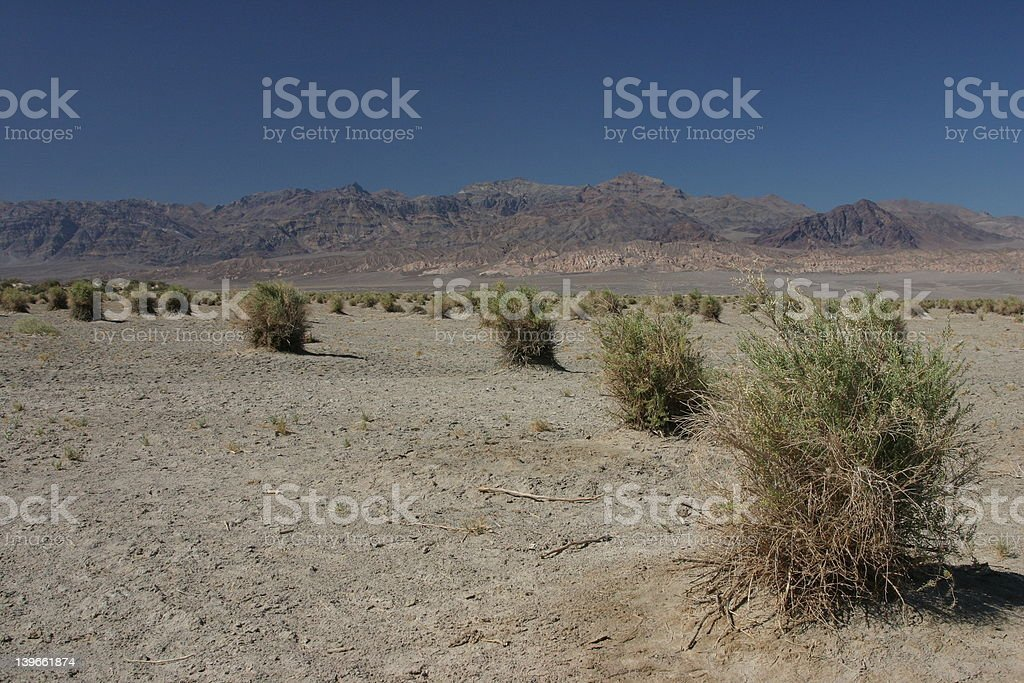 Summer in Death Valley royalty-free stock photo