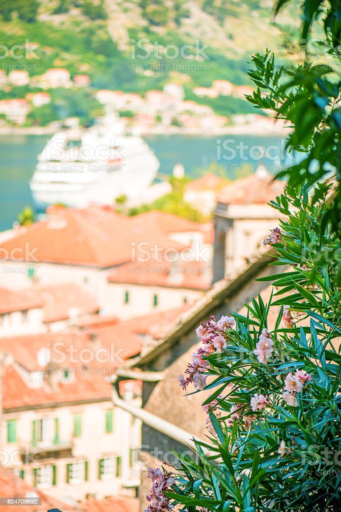 Summer in Kotor, Montenegro. Detail stock photo