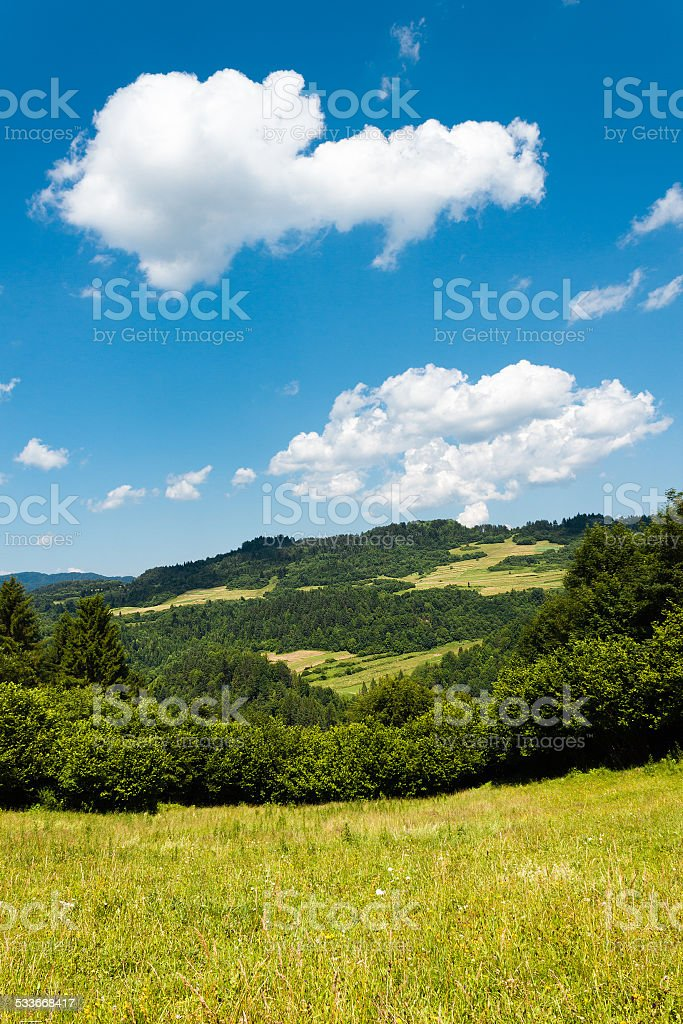 Summer in Mountains. Pieniny, Slovakia. stock photo