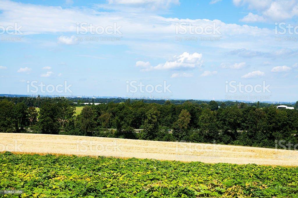 Summer in Ruhrgebiet stock photo