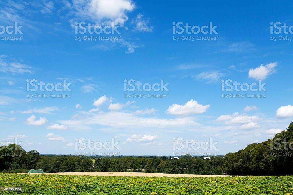 Summer in Ruhrgebiet: view from Essen til Duisburg stock photo