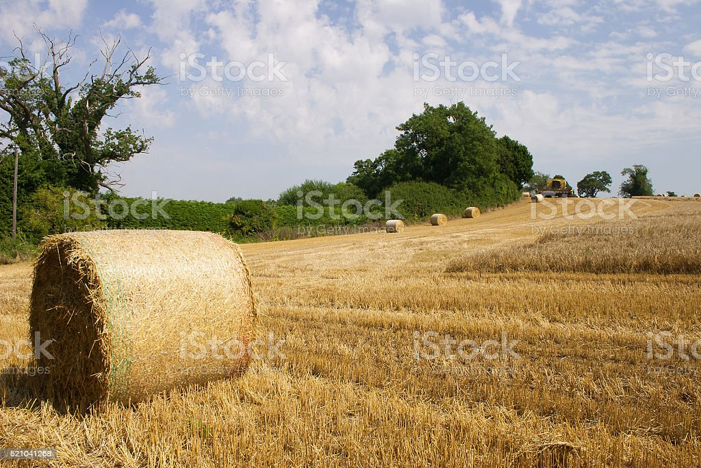 Summer in Suffolk, straw bales and golden stubble stock photo