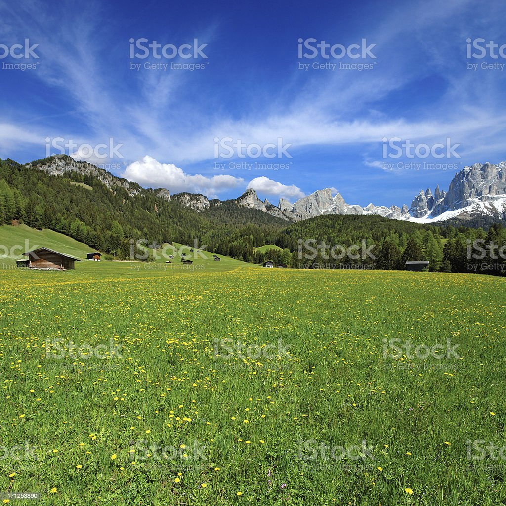 Summer in the Dolomites, Italy royalty-free stock photo