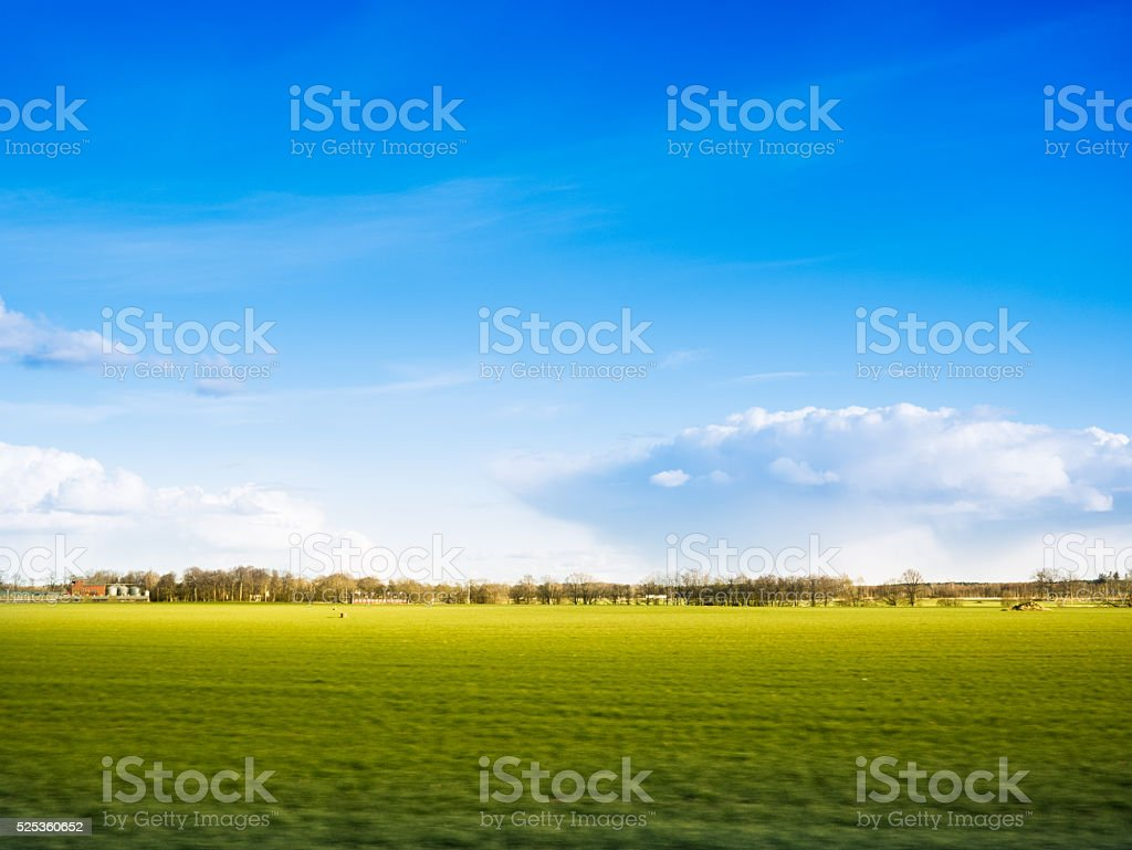 Summer landscape and green field stock photo