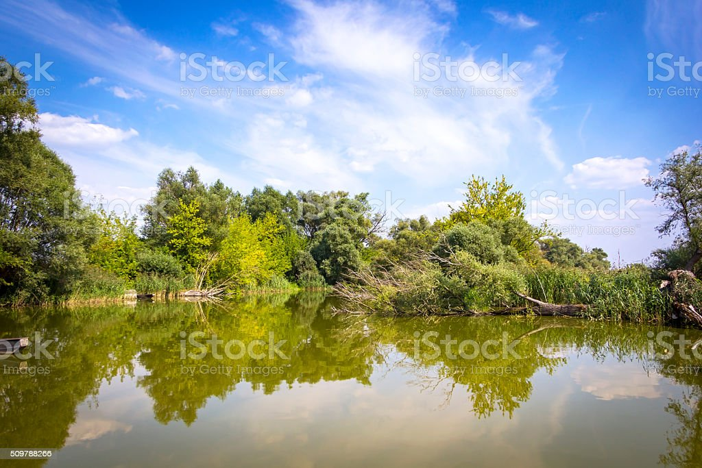 Summer landscape at the River Havel stock photo