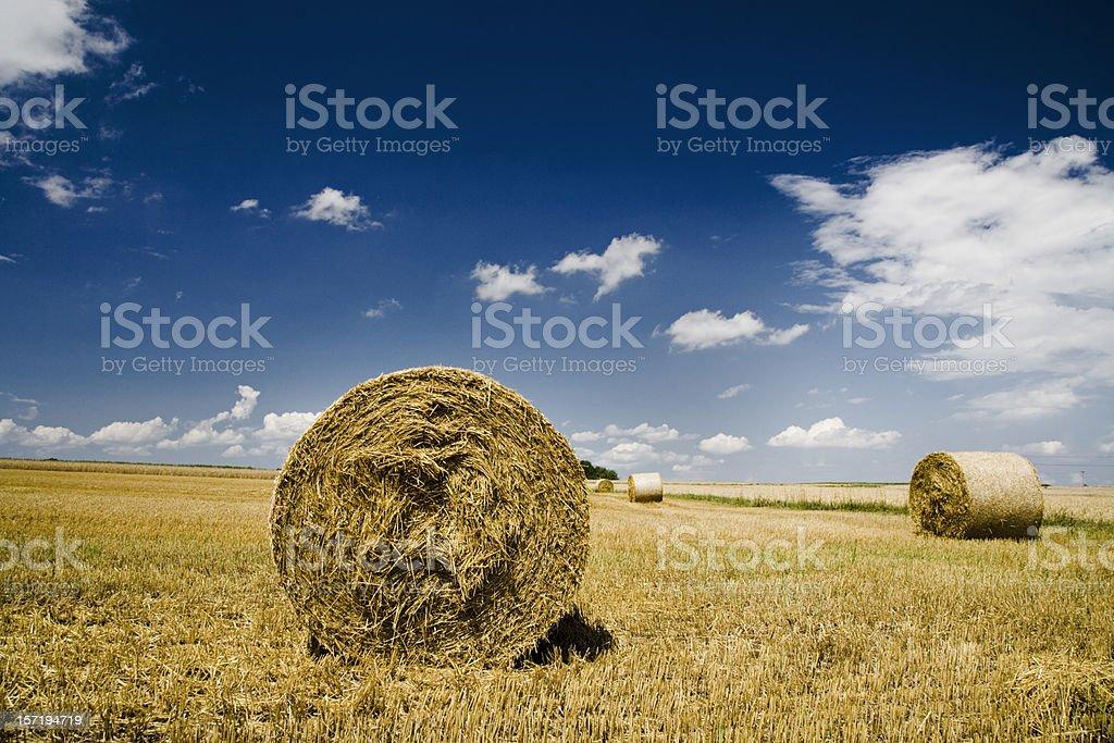summer landscape hay bales royalty-free stock photo