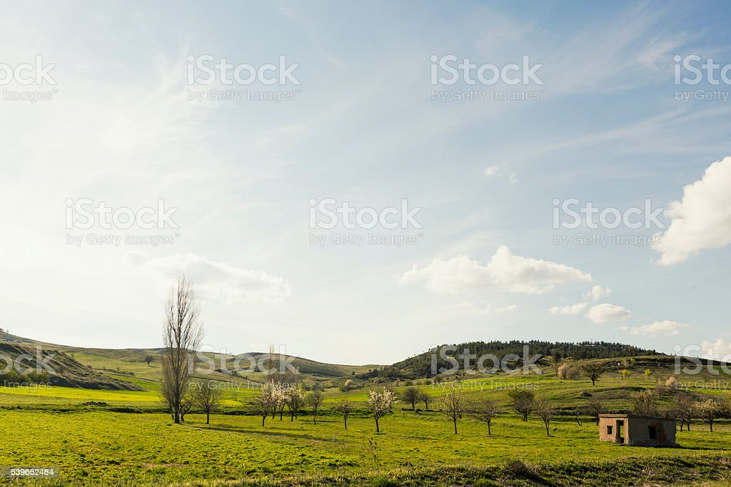 Summer Landscape in the Mountains stock photo