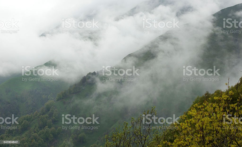 Summer landscape in the mountains. stock photo