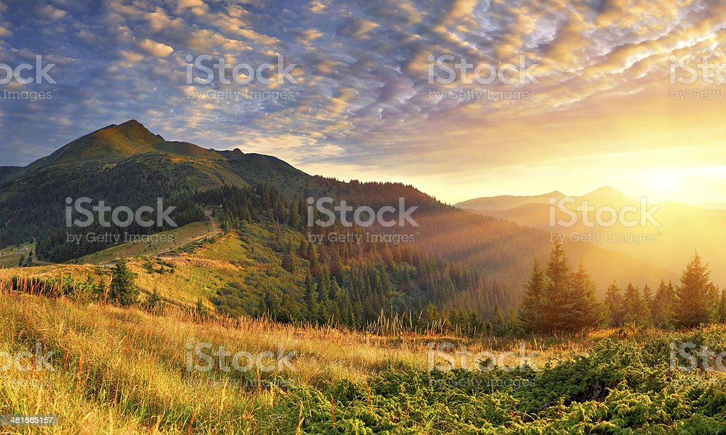 Summer landscape in the mountains. Sunrise stock photo