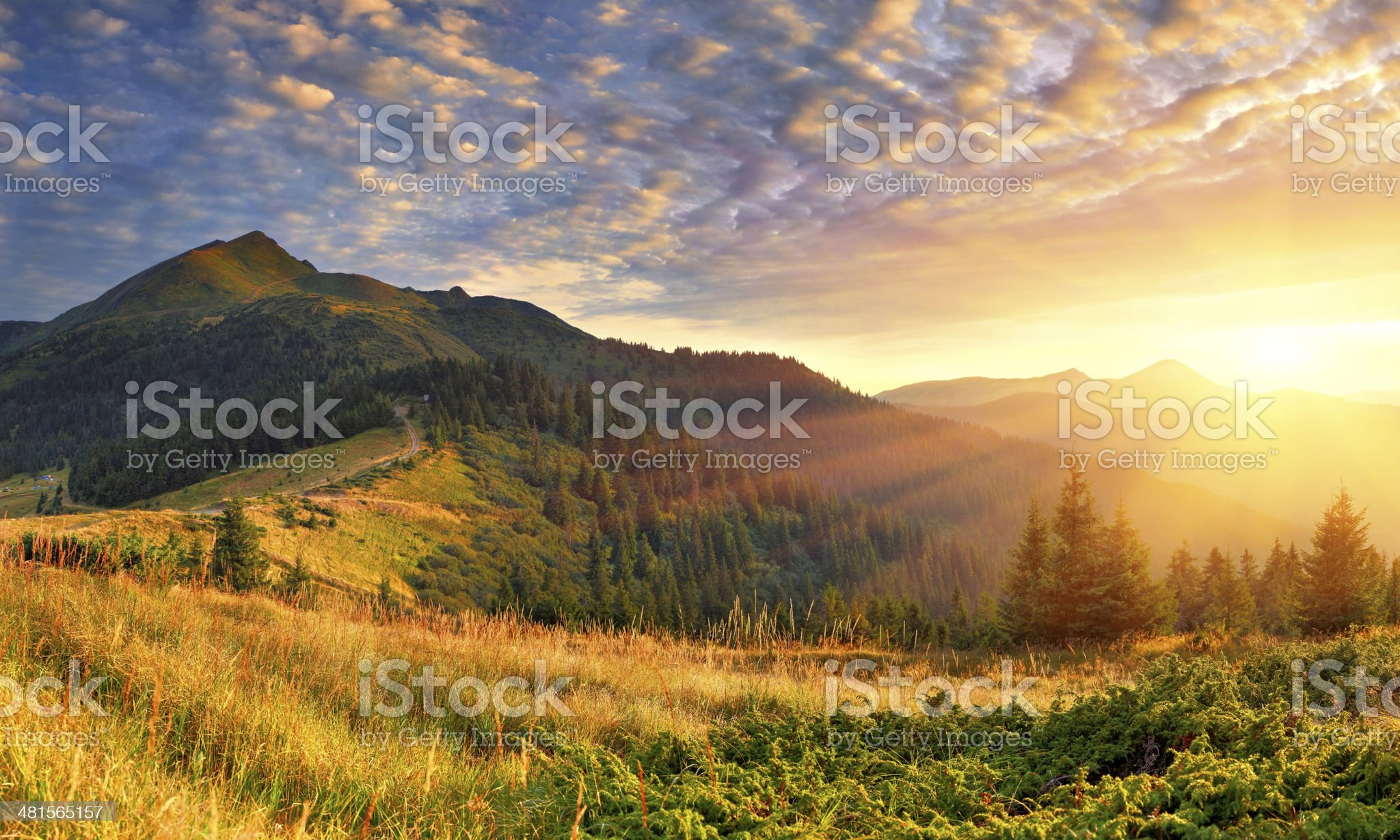 Summer landscape in the mountains. Sunrise royalty-free stock photo