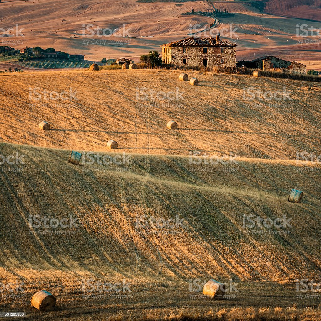 Summer landscape in Tuscany stock photo