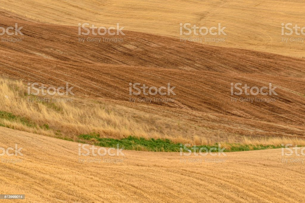 Summer landscape in Tuscany. stock photo