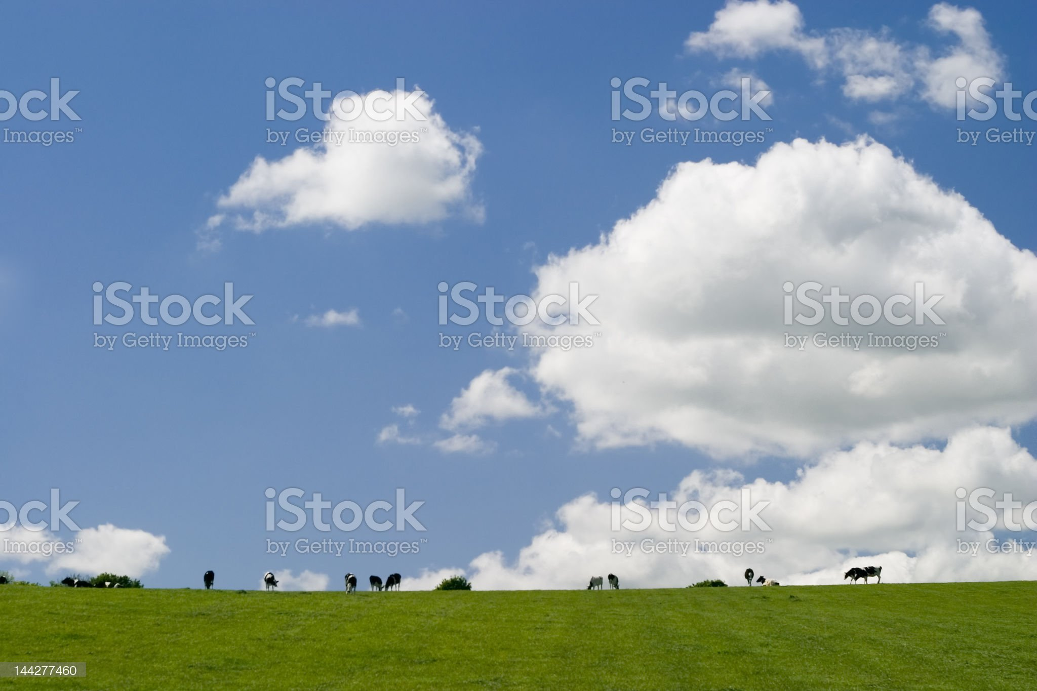 Summer landscape, Ireland royalty-free stock photo