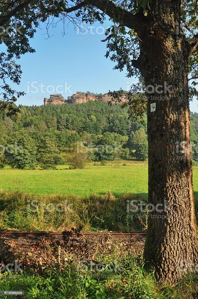 Summer landscape near the city Dahn, Germany 2013 stock photo