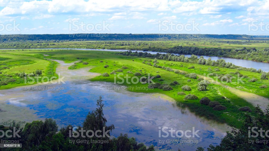 summer landscape with clouds and forest stock photo