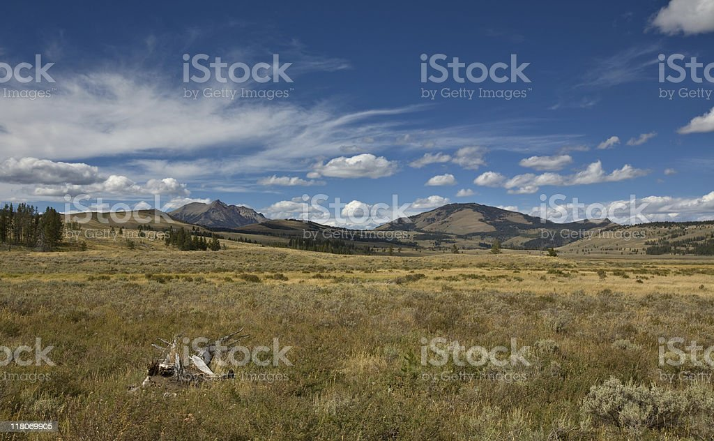 Summer Landscape with dramatic sky royalty-free stock photo