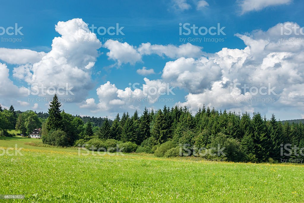 Summer landscape with forest, cottage and blue sky stock photo
