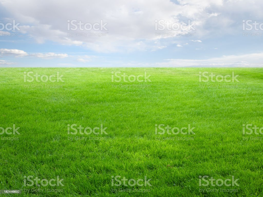 Summer landscape with grass field and sky royalty-free stock photo