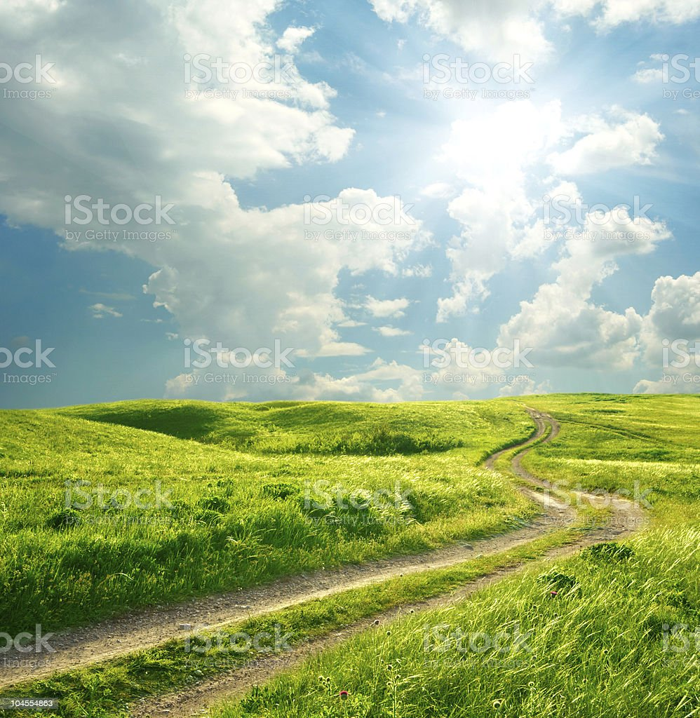 Summer landscape with green grass and blue cloud filled sky  royalty-free stock photo