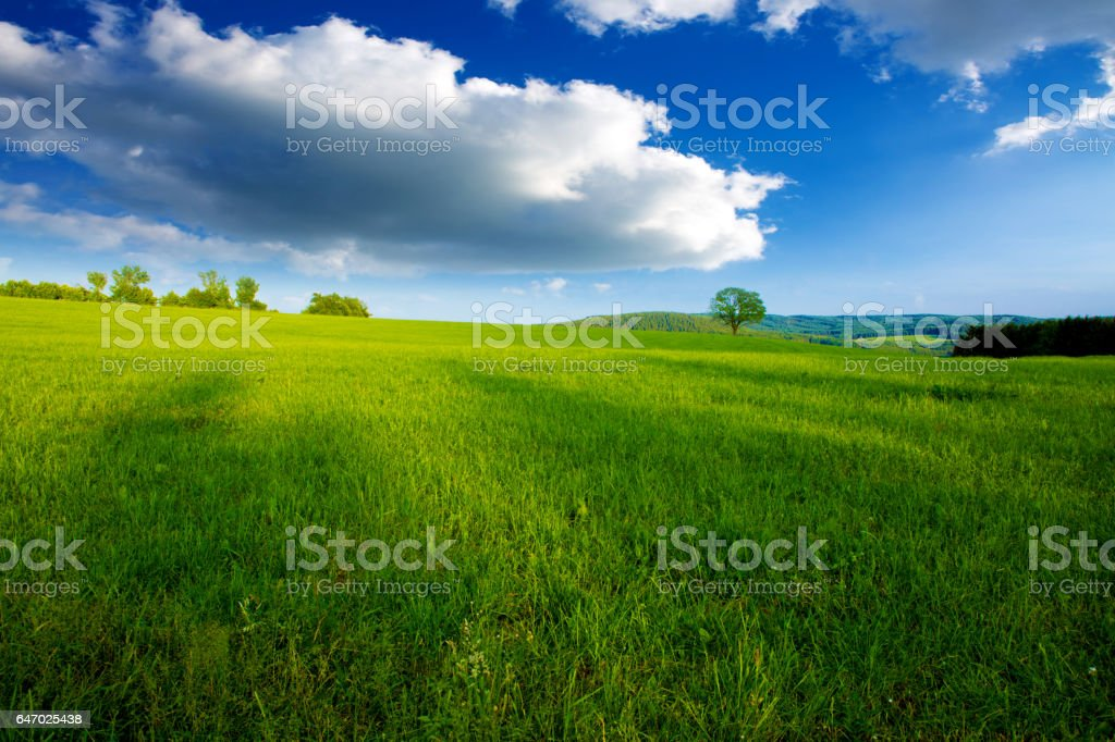 Summer landscape with green grass and clouds stock photo