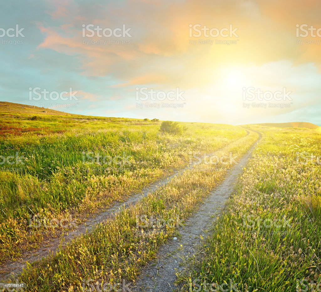 Summer landscape with green grass, road and sunset clouds stock photo