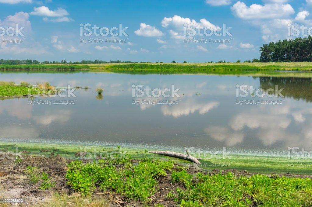 Summer landscape with lake Kozachy Liman in Chernetchina village, Ukraine stock photo