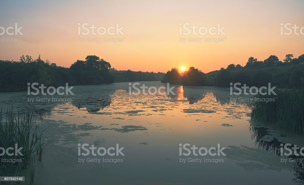 Summer landscape with river stock photo