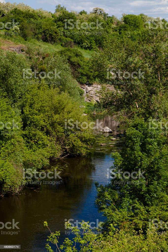 Summer landscape with the lake royalty-free stock photo