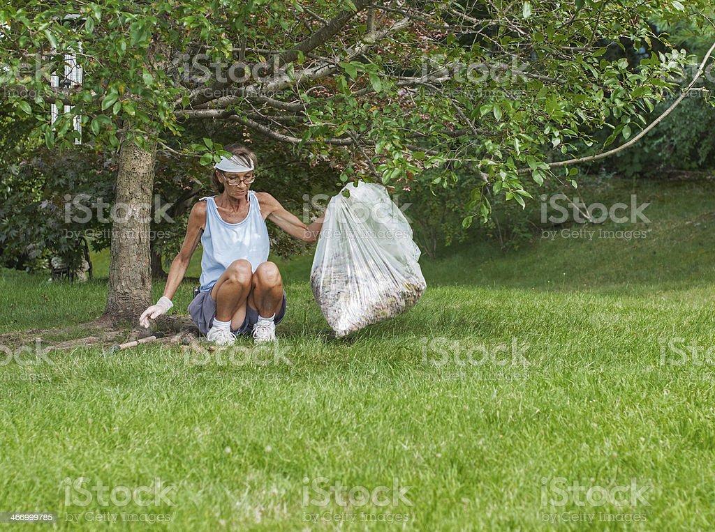 Folha de verão de limpeza foto royalty-free