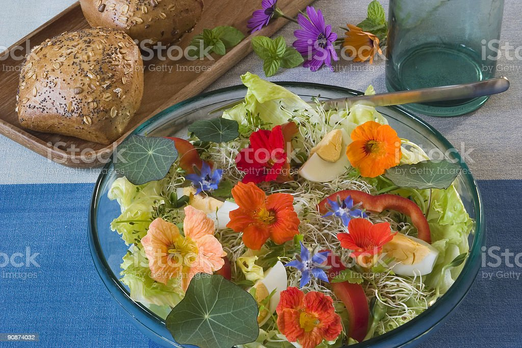 Summer lunch royalty-free stock photo